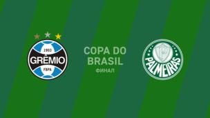 Гремио — Палмейрас — 0:1. Кубок Бразилии. Обзор матча, видео гола